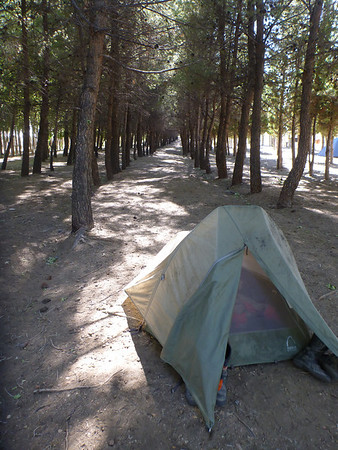 Camping in el Bosque in Zapala.
