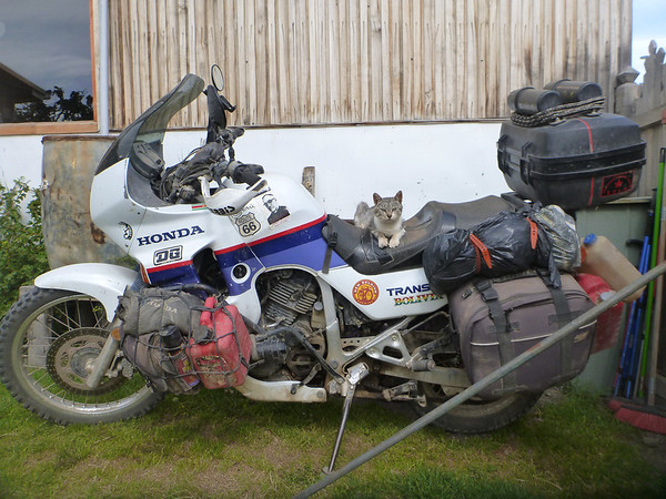 Kitty loved sleeping on the bike at the hostel in Puerto Natales.