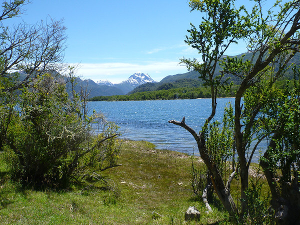 View from our campsite in the Seven Lakes region on the way to Bariloche.