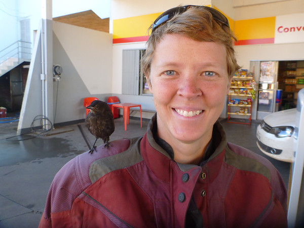 Jill with bird on shoulder.  Normal gas station activity.  Somewhere near Lages