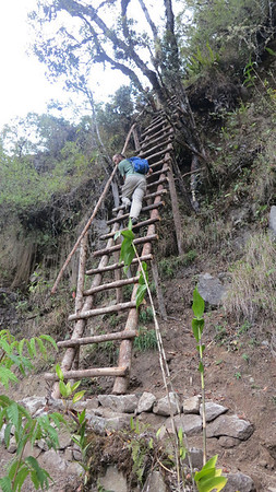 Down the ladder on the trail around Huaynu Picchu